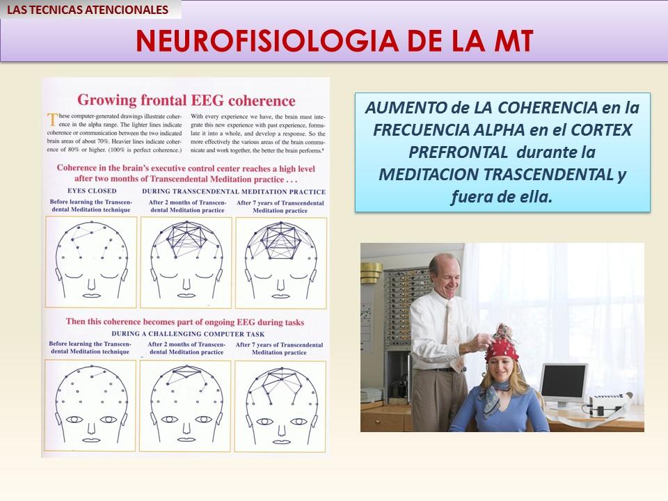 mt-aumento-de-la-coherencia-cerebral