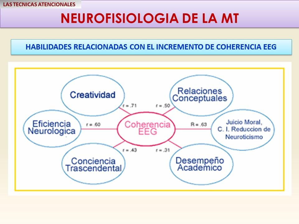 mt-habilidades-relacionadas-con-la-coherencia-cerebral