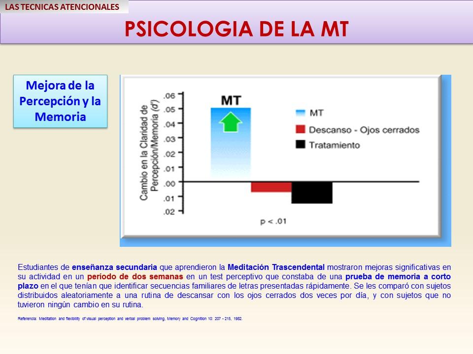 mt-mejora-de-la-percepcion-y-memoria