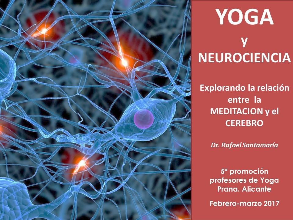 Neurociencia curso