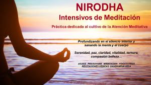 NIRODHA Intensivos de Meditación. Alaya. Ene.2021 @ ALAYA Institute | Alicante | Comunidad Valenciana | España